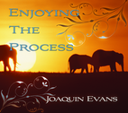 Enjoying the Process by Joaquin Evans