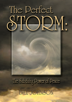 The Perfect Storm by Bill Johnson