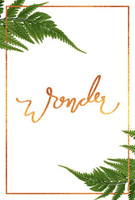 Wonder: Bethel Women's Conference August 2015 by Bethel Staff, Christine Caine, and Lisa Bevere