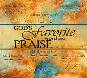 God's Favorite Word for Praise by Dan McCollam